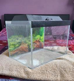 Fish tank 43l