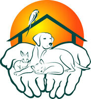 And Away You Go! Pet & Home Sitting Service Professionals