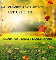 Leaf Clean-Up/Leaf Removal/Lawn Raking Leaves/Fall CleanUp