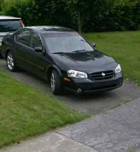 Maxima 2001 (20th Anniversary edition)