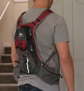 6 Litre Gregory Hydration Pack