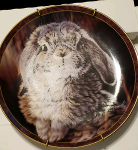 REDUCED...Bradford Exchange Bunny Tales Collection Plate