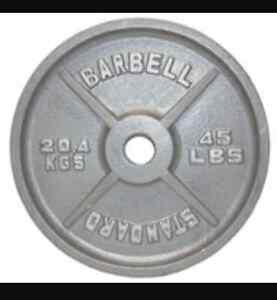 Barbell Standard steel weights