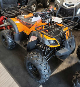 125cc Atv | Find New ATVs & Quads for Sale Near Me in Ontario