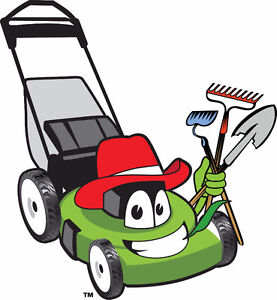 SPRING CLEAN-UP / LAWN MAINTENANCE / LAWN MOWING