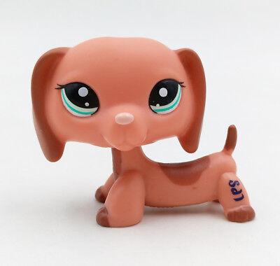 Littlest Pet Shop #2046 Dachshund Dog Gift Puppy Brown Peach Blue Eyes LPS Toys