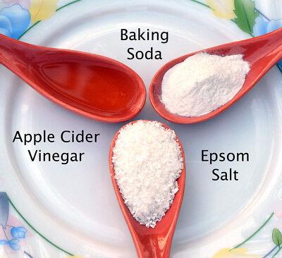 Uses for Vinegar, Salt, Baking Soda on CD FREE SHIPPING Vinegar Baking Soda