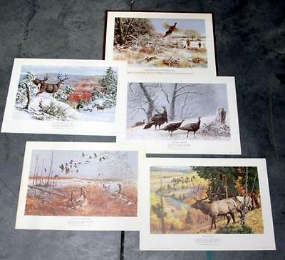 Remington Arms Co. Portfolio - Wildlife and the Outdoorsman - 4 prints