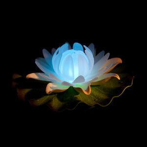 Floating night light ~ Lotus flower colour changing LED lights