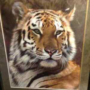 Last Watch- Bengal Tiger Limited Edition Print