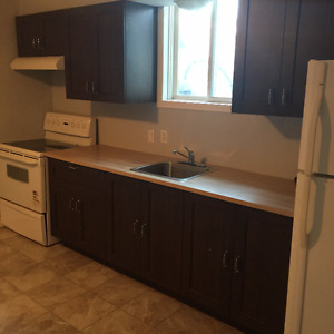 3 bedroom apartment - Downtown Lindsay - Available July 1st