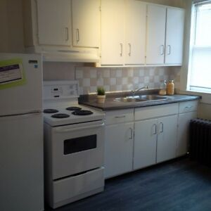 Large 2 Bedroom + Finished Basement in Century Home Downtown Kitchener / Waterloo Kitchener Area image 4