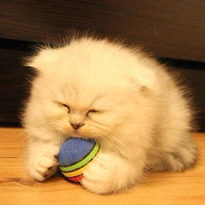 Ball Small Cats - New Puppy Kitty Play Ball Small Pet Dog Cat Rainbow Chew Training Device Random
