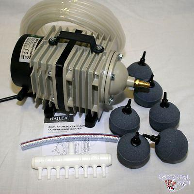 80 LTR PISTON AIR PUMP PKG.2  KOI FISH POND FILTER ACO388D  UK PLUG