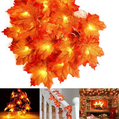 3m Fall Thanksgiving Maple Leaves 30 LED Light Lamp Garland Festival Decor I
