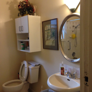 clean nice furnished room , weekly rent