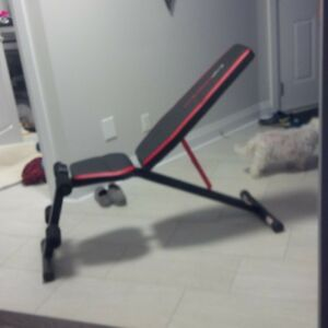 Simple workout bench CAPstrength brand