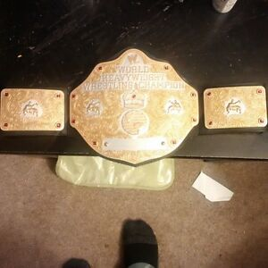 Custom painted WWE World Heavyweight Championship