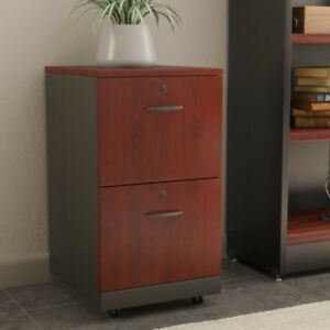 Filing Cabinet: Castalia 2 Drawer Filing Cabinet by Red Barrel S