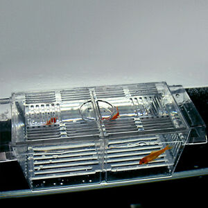 4 in 1 Floating Fish Hatchery Trap Fry Breeding Aquarium Tank Isolation Box New