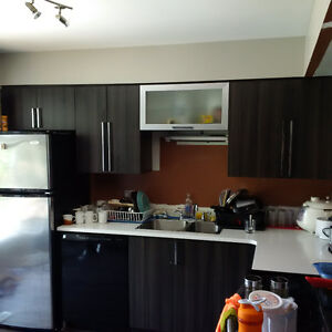 Luxury 5 Bedroom Student Rental Near UWO / Amenities