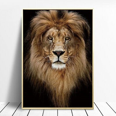 Golden Lion Animal Canvas Painting Wall Art Picture Poster Print Home Decor ](Animal Print Decor)