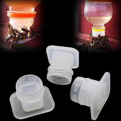 3pcs New Beerinking Fountain Bee Queen Bee Water Feeding Equipment Pop De
