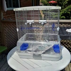 visions bird cage