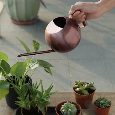 1l stainless steel watering can garden flower