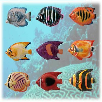 9  Tropical Fish Ceramic  Magnets  Bid Now Or Add To Your Watch List  Hurry