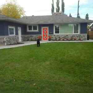 Executive Bungalow for Rent in Laurier Heights Edmonton Edmonton Area image 1