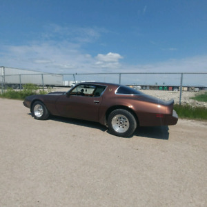 For sale 79 firebird