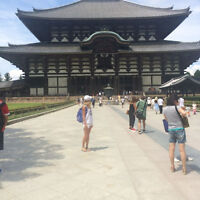 Japan Budget Holiday *All Inclusive!!
