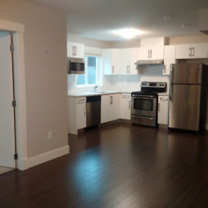 Spotless 2 bedroom basement suite for an excellent renter