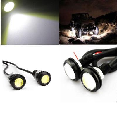 4X White LED Eagle Eye UnderBoby Lighting For Yamaha Suzuki Honda Arctic Cat ATV