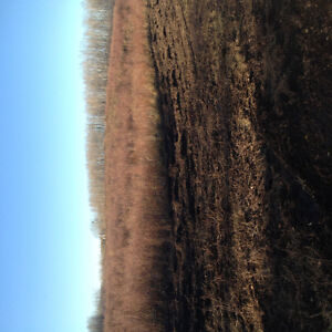 21 acres Edmonton Edmonton Area image 2