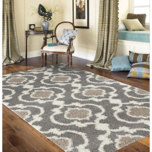 Area Rug-Brand New!!