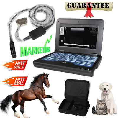Vet Veterinary Portable Ultrasound Scanner Machine For Cowhorseanimalrectal
