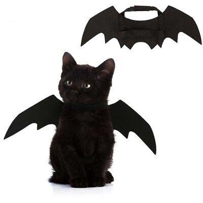 Small Pet Cat Halloween Dress Up Bat Wings Kitten Fancy Vampire Cape Costume