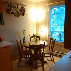 Room in Spacious 2BR Apt - Downtown, March 15/April 1