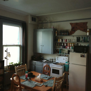Summer Sublet. Bright Studio Apartment in South End, Near SMU.