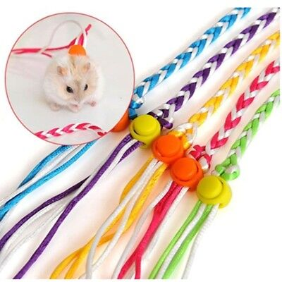 Rat Mouse Harness Rope Ferret Hamster Collar Leash Lead Glider  Colorful DT4