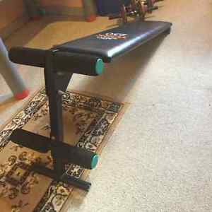 home exercise equipment for sale (clearing room for renovation) Windsor Region Ontario image 7
