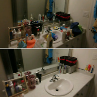 HOUSE CLEANING&ORGANIZING-EUROPEAN TOP TO BOTTOM CLEANING