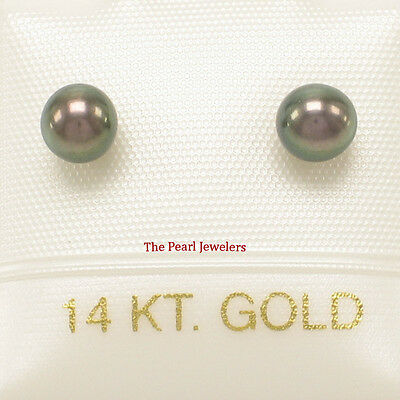 14k Yellow Gold AAA 4-4.5mm High Luster Black Cultured Pearl Stud Earrings- TPJ