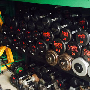 commercial dumbbell set London Ontario image 1