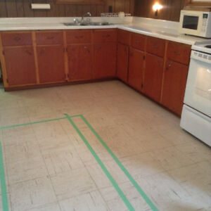 Kitchen Cupboards, Counter Top, Double Sink & Faucet