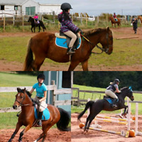 Try a Riding Lesson Day at Seaglass Stables!