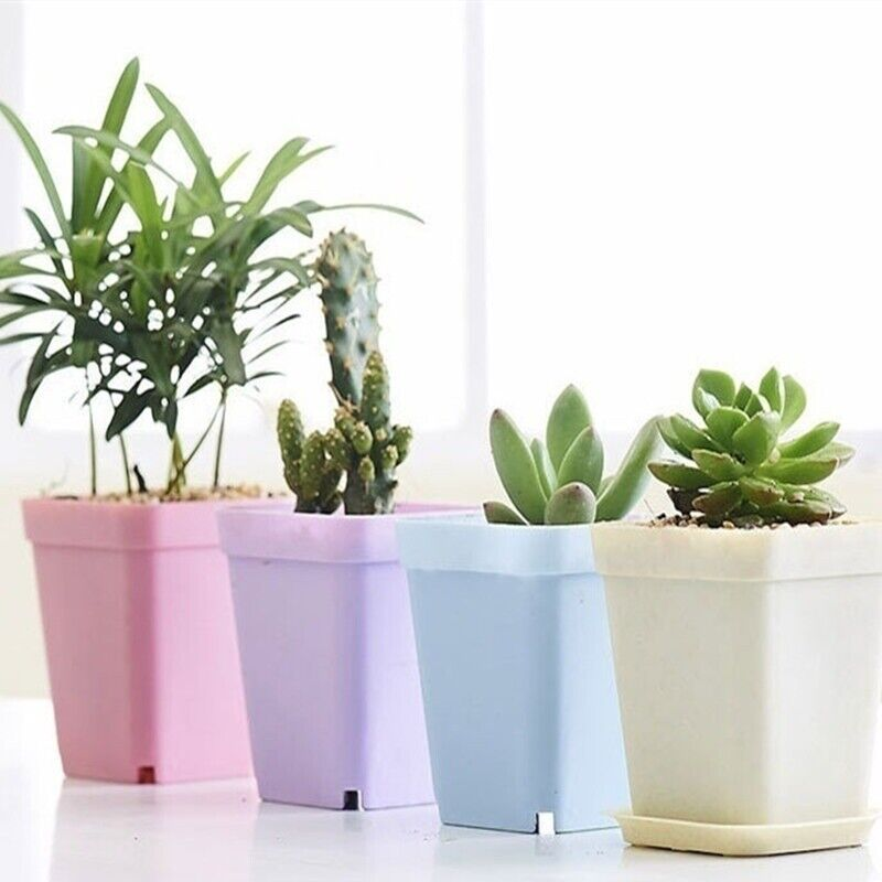7pcs Mini Square Planting Pots Colorful