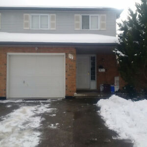 House near Conestoga Doon Campus available for rent - May 2017